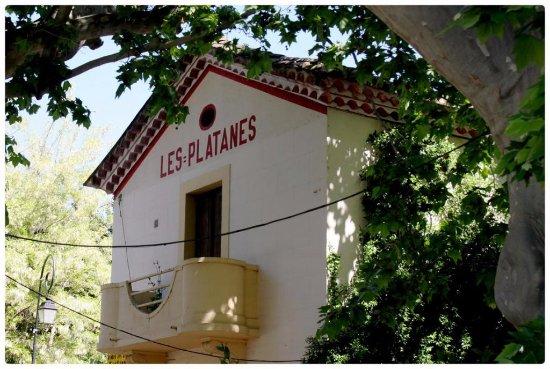 Aramon, Франция: les platanes