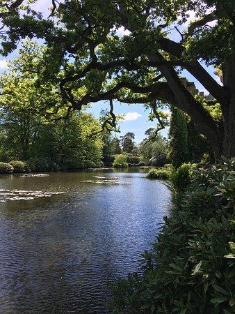 Lamberhurst, UK: photo1.jpg