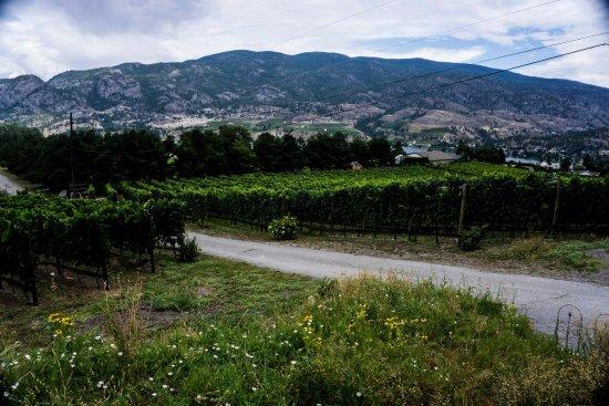 Kaleden, Kanada: Kraze Legz
