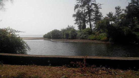 Niwant Sagar Beach Resort Hotel Reviews Shrivardhan India Tripadvisor
