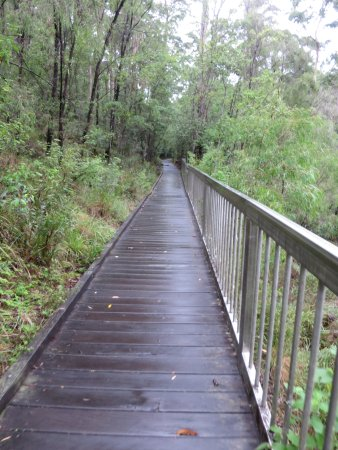 Pemberton, Australien: Safe bridge to walk on. Water is underneath