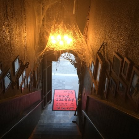 Fear Factory Queenstown: photo3.jpg