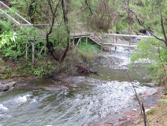 Pemberton, Australien: View from the walk bridge- just waiting for you to explore this beautiful spot