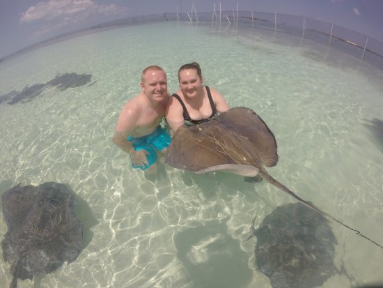 New Providence Island: Stingray City Bahamas