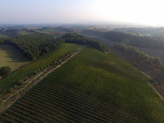 Azienda Agraria San Gregorio