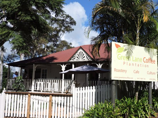 Tamborine Mountain, Avustralya: Cute with great coffee: a winning combination