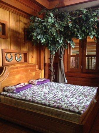 Chai Prakan, Таиланд: ที่นอนเพื่อสุขภาพ ราคาไม่ธรรมดา