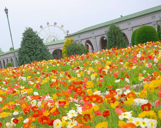 Kobe Municipal Fruit & Flower Park