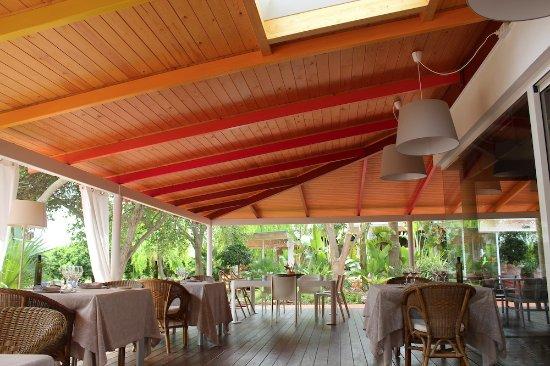 Tancat de Codorniu: Terraza de restaurante