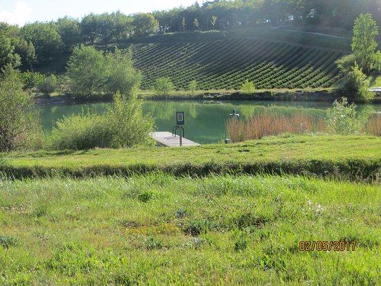 Dieulefit, Frankrijk: L'étang et le champs de lavande