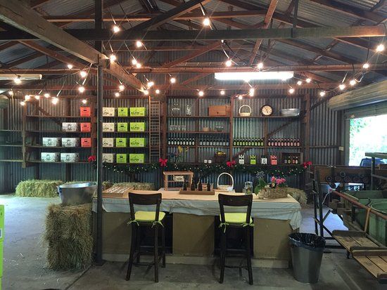 Bilpin, Australia: Our Cellar Door - taste our range of alcoholic and non alcoholic varieties.