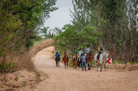 Muldersdrift, Sudafrica: Trail rides for the whole family, beginner or advanced