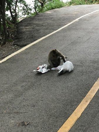 Phe, Tailândia: photo2.jpg