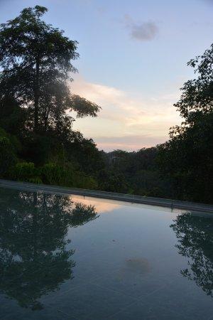 Tanah Merah Art Resort: Sunset by the pool