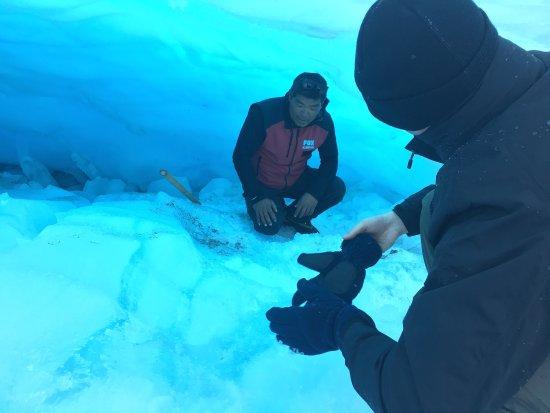Fox Glacier, New Zealand: photo5.jpg