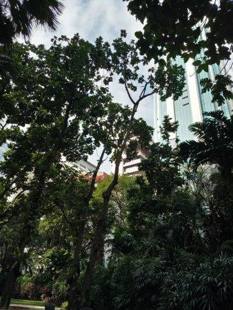 Shangri-La Hotel Kuala Lumpur: photo3.jpg