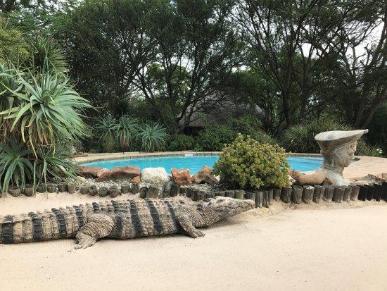 Aquanzi Lodge: kleiner Pool