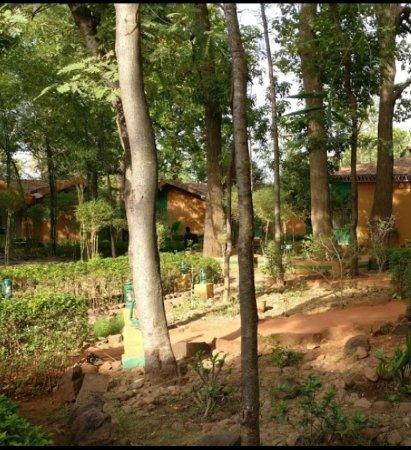Foto de Nature Heritage Resort