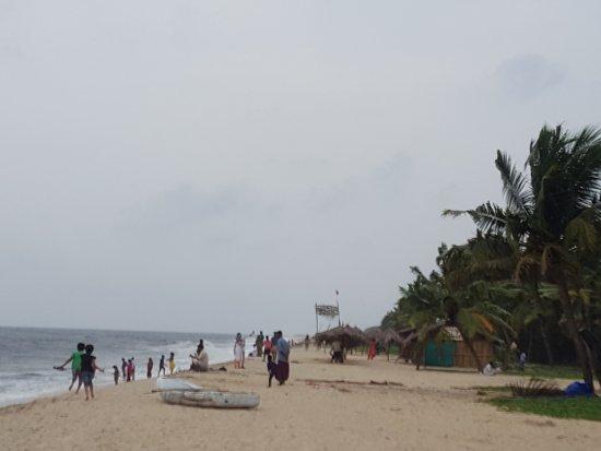 Marari Beach: 20170521_181209_large.jpg