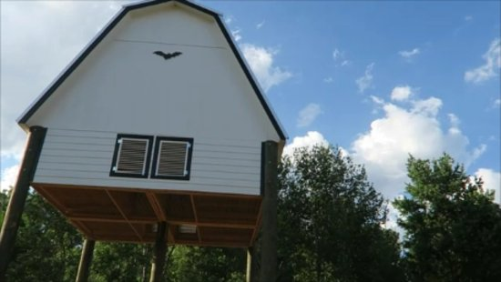 University Of Florida Bat House New Barn