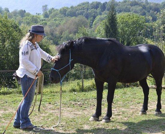 Sant'Omobono Terme, Italie : Guarigione con cavallo