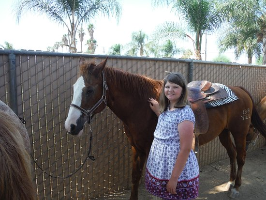 Norco, Californien: Daughter + horse
