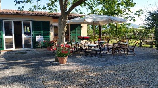 Zagarolo ristorante giardino ancona italian guide