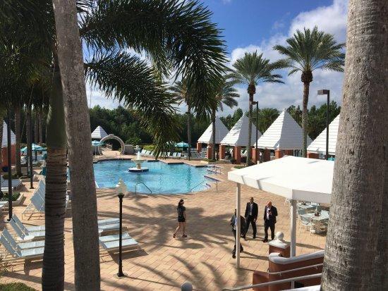Hilton Grand Vacations at SeaWorld: 中庭にあるプール