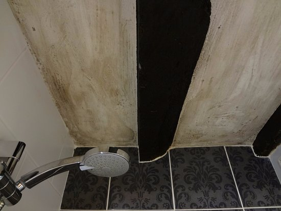 Shipton under Wychwood, UK: Moldy shower ceiling