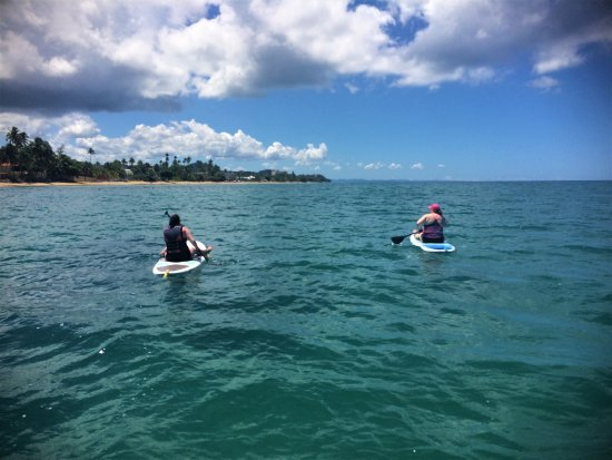 Rincon, Puerto Rico: You don't always have to stand up to have a great time!