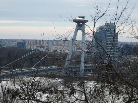 New Bridge (Novy Most): vista del puente desde el castillo