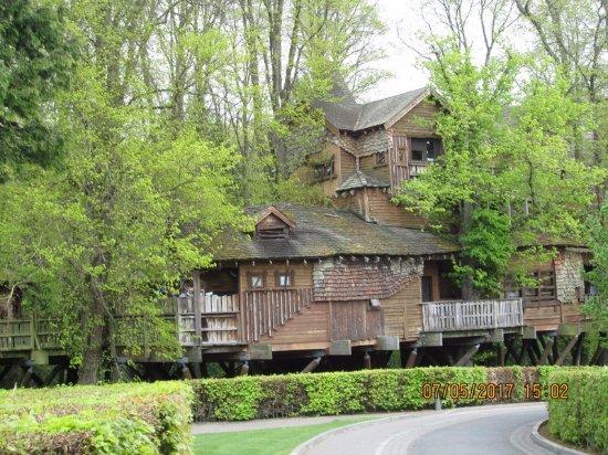 Alnwick, UK: the treehouse