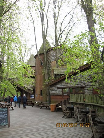 Alnwick, UK: treehouse with walks to the rope bridges