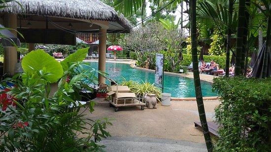 Kata Palm Resort & Spa: IMG-20170120-WA0084_large.jpg