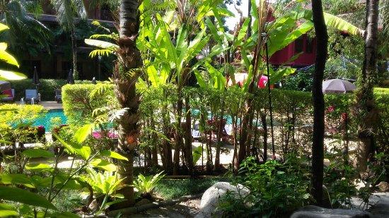 Kata Palm Resort & Spa: IMG-20170114-WA0006_large.jpg