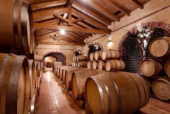 Montemagno, Itália: La nostra Cantina