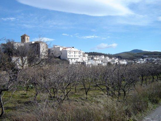 Laujar de Andarax, Spain: Cadíar © Robert Bovington