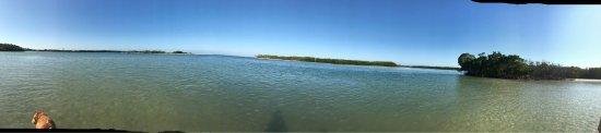 Dog Beach: photo0.jpg