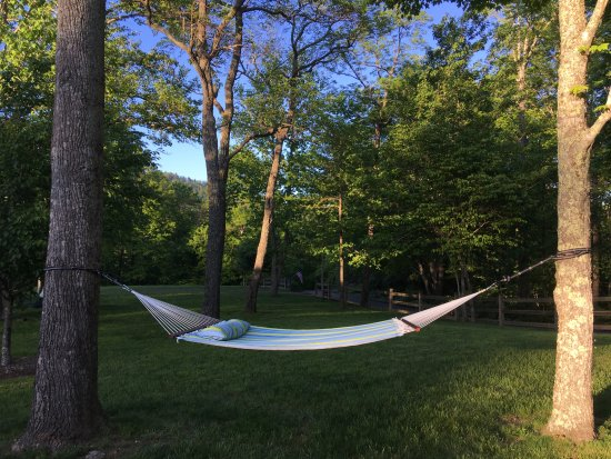 Fairview, NC: Sleep, read in a hammock