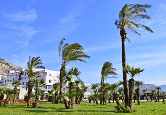 Saracen Resort Beach & Congress Hotel
