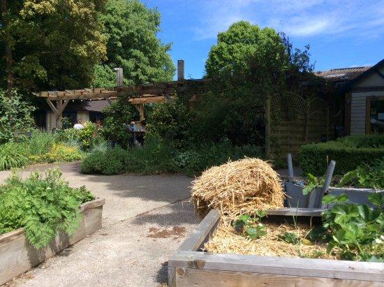 Grayshott, UK: Applegarth farm