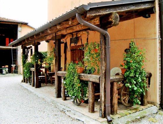Codogne, Italie : RACCOLTA DI VECCHI ATTREZZI DEL MESTIERE DI CONTADINO