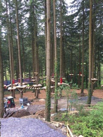 Betws-y-Coed, UK: Tree Top walk in construction