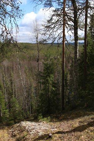 Saarijärvi, Finlandia: Kulhanvuori