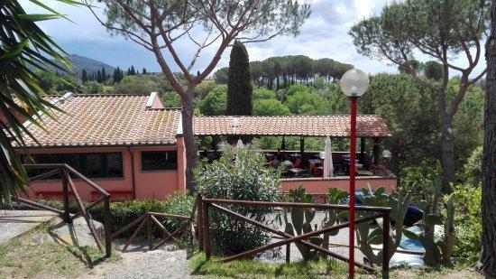Coltano, Italië: IMG_20170508_130656_large.jpg