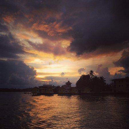 """Bocas Town, Panama: En allant plonger de nuit... + Vie sous-marine au (meilleur) spot nommé """"Saché"""""""