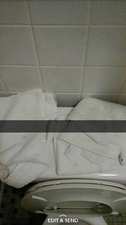 Palmyra, MO: Stains on towels
