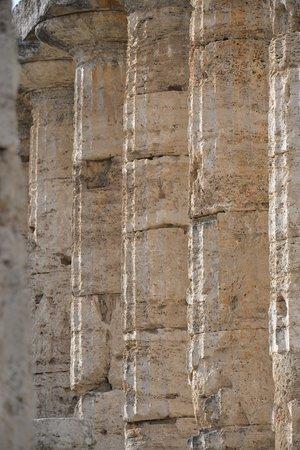 Templi Greci di Paestum: le colonne
