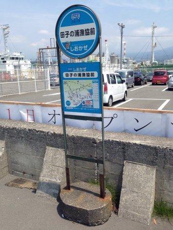 Фуджи, Япония: photo4.jpg
