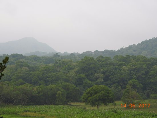 Jungle Palace: View from private balcony-mountains behind